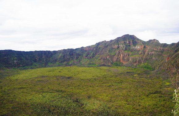 Rift Valley Safari
